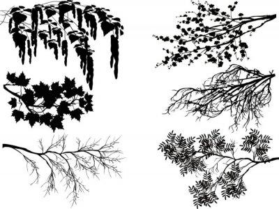 Nálepka Šest jarní větve na bílém