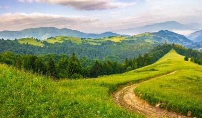 Nálepka Silnice přes jehličnatého lesa v horách při východu slunce