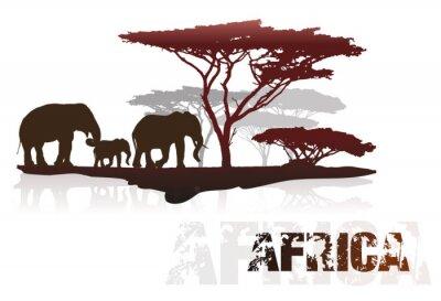Nálepka Silueta Afriky stromů a slony