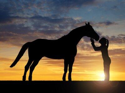 Nálepka Silueta dívka dává pusu koně v západu slunce