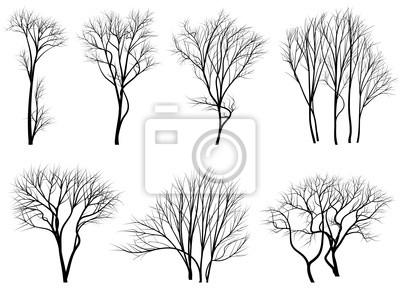 Nálepka Siluety stromů bez listí.