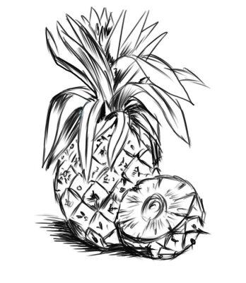 Nálepka skici pro ananasem