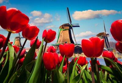 Nálepka Slavné holandské větrné mlýny
