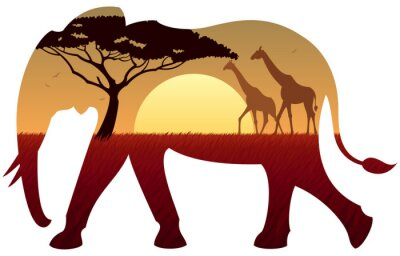 Nálepka slon krajina