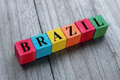 Nálepka slovo na barevné dřevěné kostky Brazílie