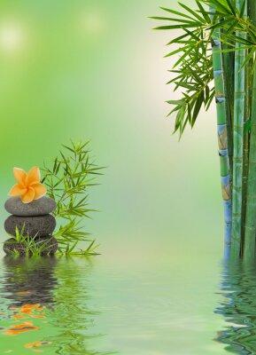 Nálepka Složení aquatique relaxační masáž zen