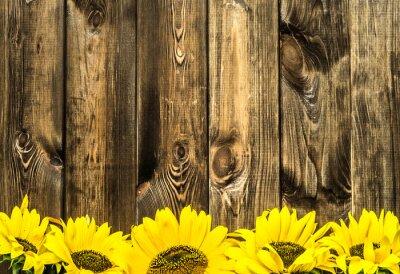 Nálepka Slunečnice na starých dřevěných prken. Květiny pozadí s kopií vesmíru