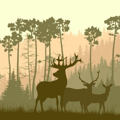 Nálepka Square ilustrace divoké losa na okraji lesa.