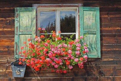 Nálepka stará dřevěná okna s Planter