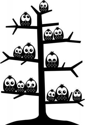 Nálepka strom plný sov