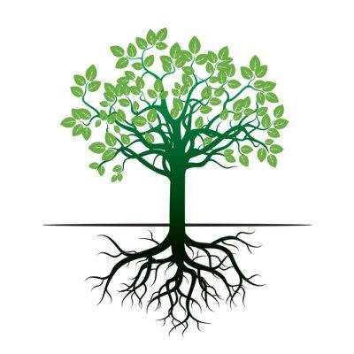 Nálepka Stromu a kořeny. Vektorové ilustrace.