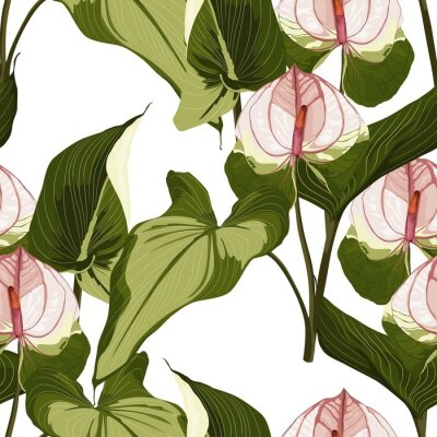 Nálepka Summer colorful hawaiian seamless pattern with tropical plants and Spathiphyllum flowers on white background.