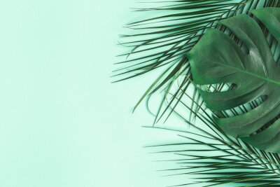Nálepka Summer composition. Palm leaves on mint background. Summer concept. Flat lay, top view, copy space