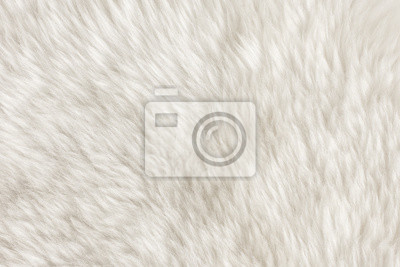 Textura kůže / textury