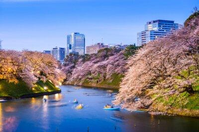 Nálepka Tokijský císařský Moat na jaře