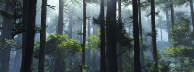 Nálepka Trees in the fog. The smoke in the forest in the morning. A misty morning among the trees. 3D rendering