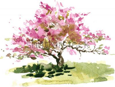 Nálepka třešňový květ strom kresba akvarel, akvarel skica kvetoucí jablko květiny, malování zahrady, ochutnávky ostatních uměleckých pozadí
