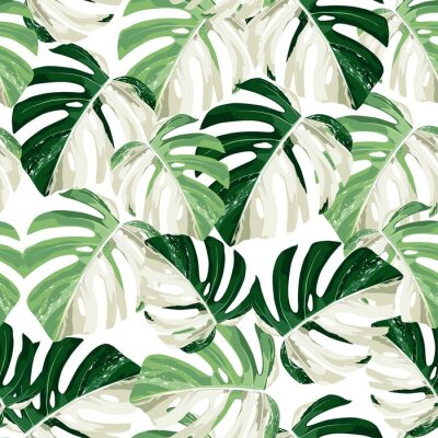 Nálepka Tropic summer painting seamless pattern with exotic monstera leaves.