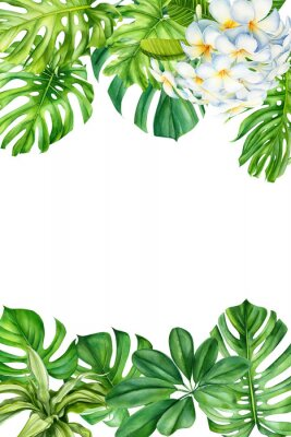 Nálepka tropical leaves and flowers on an isolated background, greeting cards with space for text, watercolor painting, botanical illustration, floral design, plumeria, palms, monstera