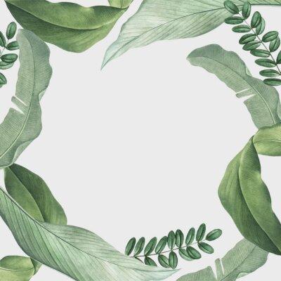 Nálepka Tropical leaves frame