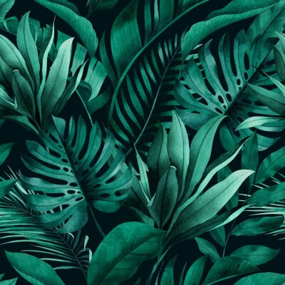 Nálepka Tropical seamless pattern with exotic monstera, banana and palm leaves on dark background.