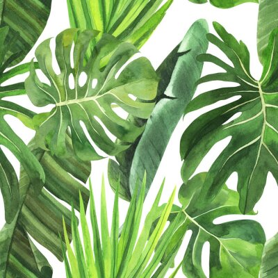 Nálepka  Tropical seamless pattern with tropical leaves, palm banana monstera on an isolated white background, watercolor jungle drawing, stock illustration.