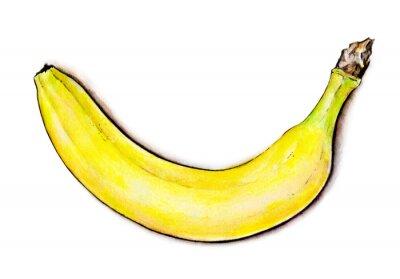 Nálepka Tropické ovoce