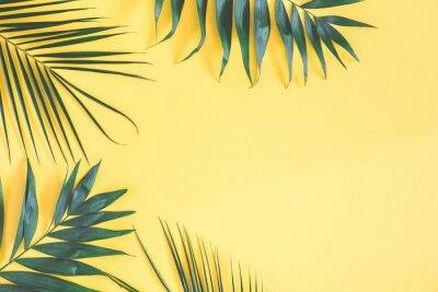 Nálepka Tropické palmové listy na žlutém pozadí. Letní koncept. Ploché položení, pohled shora, prostor pro kopírování