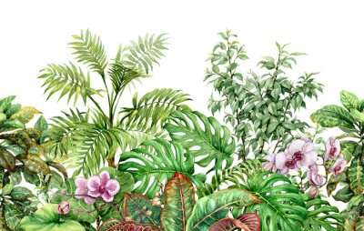 Nálepka Tropické rostliny linie bezešvé vzor