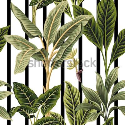 Nálepka Tropické vinobraní palmy, banán strom květinový vzor bezešvé černé a bílé pruhy pozadí. Exotické botanické džungle tapety.