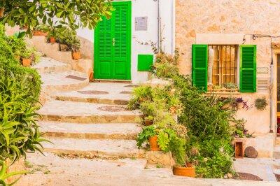 Nálepka Typická rostlin dekorace na staré rustikální středomořské vesnice