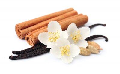 Nálepka vanilkové tyčinky
