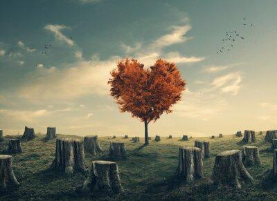 Nálepka Ve tvaru srdce strom v lese zúčtování