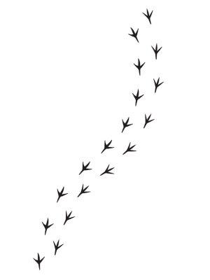 Nálepka Vector black bird paw steps road isolated on white background