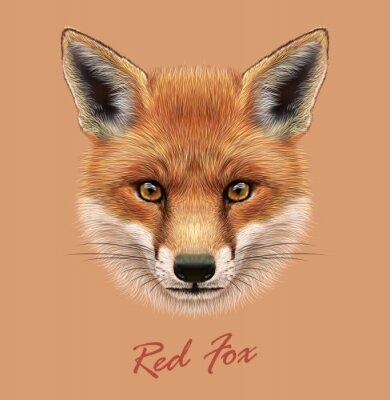 Nálepka Vektor Ilustrační Portrét Red Fox