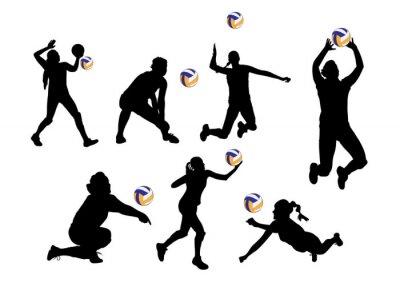 Nálepka vektorové ilustrace grafické pozadí volejbalisté sportovní