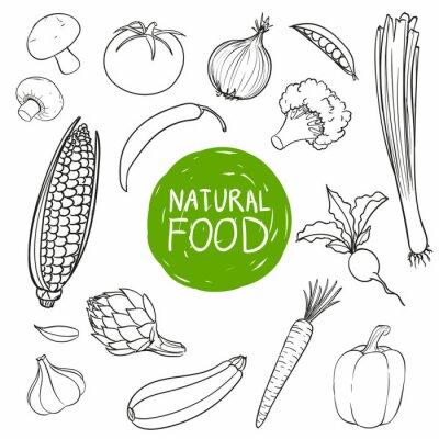 Nálepka Vektorové ilustrace ručně kreslenými Zelenina