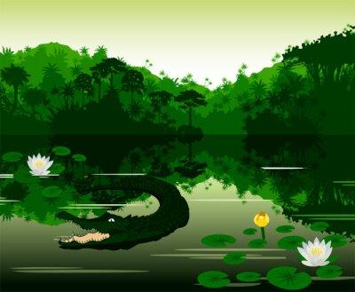 Nálepka Vektorové ilustrace Tropická řeka s krokodýlem