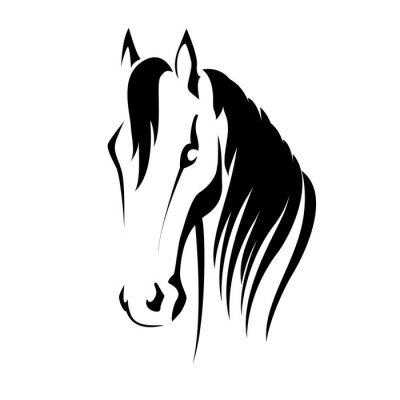 Nálepka Vektorové silueta koňské hlavy