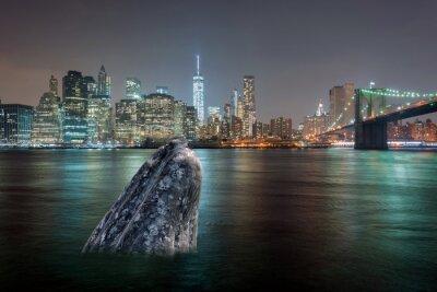 Nálepka velryba v řece Manhattanu v noci