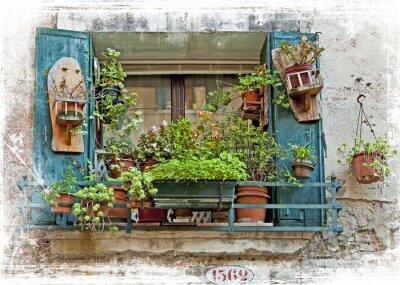 Nálepka Venice, stará malá okna s rostlinami