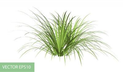 Nálepka větev se zelenými listy izolované na bílém