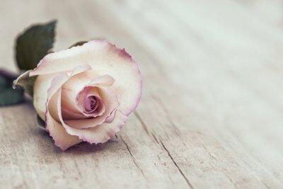 Nálepka Vintage Rose