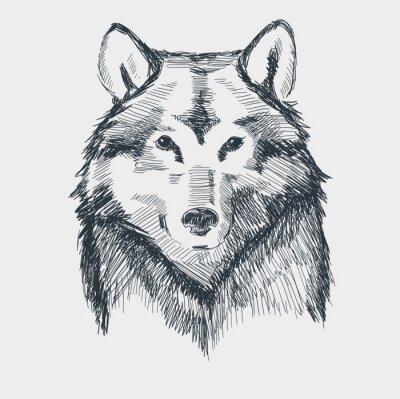 Nálepka Vlk hlava grunge ručně kreslenými skica vektorové ilustrace