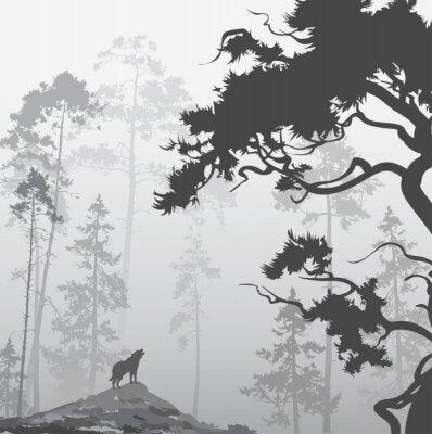 Nálepka vlk v lese