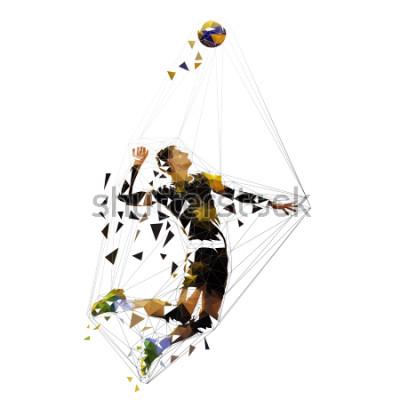 Nálepka Volleyball player serving ball, polygonal vector illustration