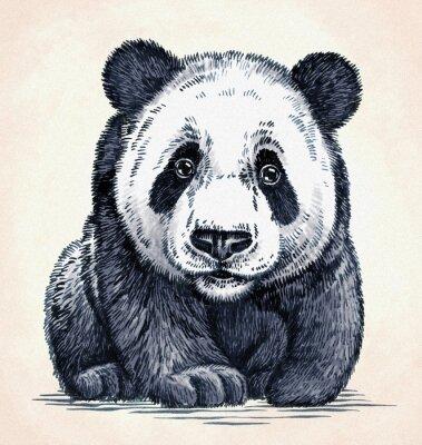 Nálepka vyrýt inkoustu draw panda ilustrační