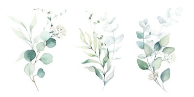 Nálepka Watercolor floral illustration set - green leaf branches collection, for wedding stationary, greetings, wallpapers, fashion, background. Eucalyptus, olive, green leaves, etc.