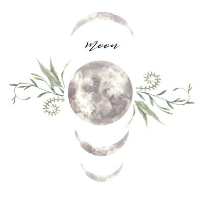 Watercolor moon and plants label. Isolated logo design with plants and lunar silhouette