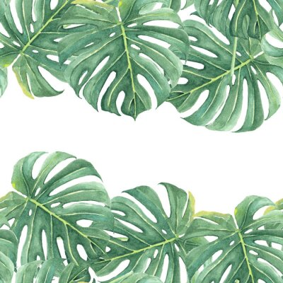 Nálepka Watercolor seamless background with colorful tropical leaves and bright plants on light background. Jungle print. Floral background. Printing and textiles. Exotic tropics. Fresh design.